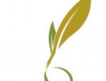 30 ottobre 2017 scedenza partecipazione II edizione premio letterario Ranieri Filo della Torre